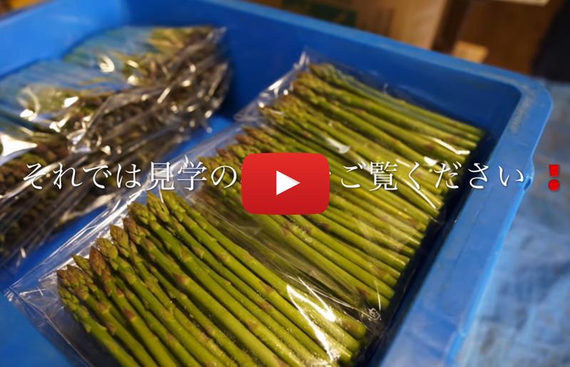 サルーチェの厳選食材紀行 in 福岡