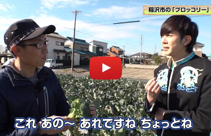 愛知県・稲沢市「特産ブロッコリー」- ボイメンのあいち農業塾! #49