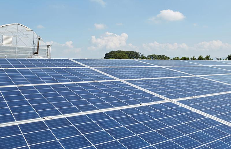 太陽光発電所の設計・建設施工