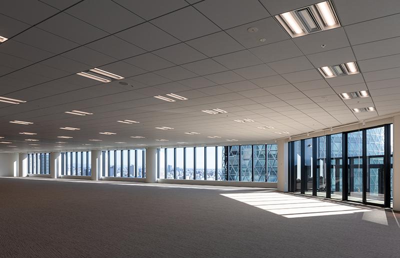 開放的で自然光が入る事務室空間