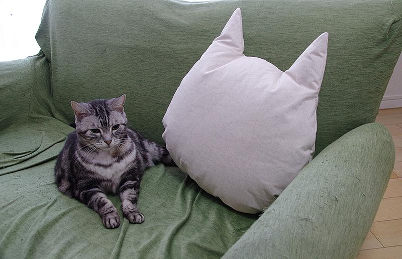 猫としあわせクッション