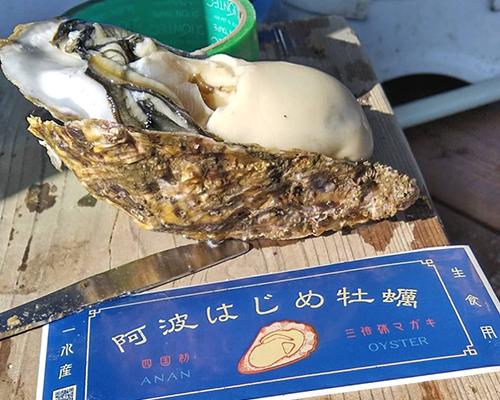 一水産 阿波はじめ牡蠣