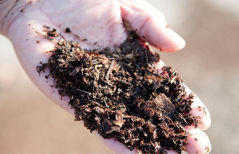 安心・安全で栄養ある土壌
